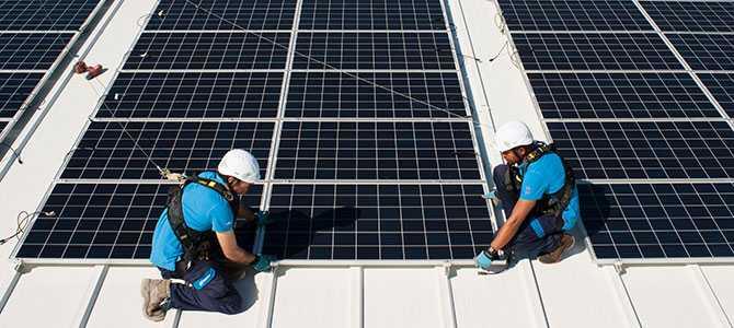 UNEF pone en marcha el Certificado de Excelencia en Sostenibilidad y la conservación de la Biodiversidad para plantas fotovoltaicas