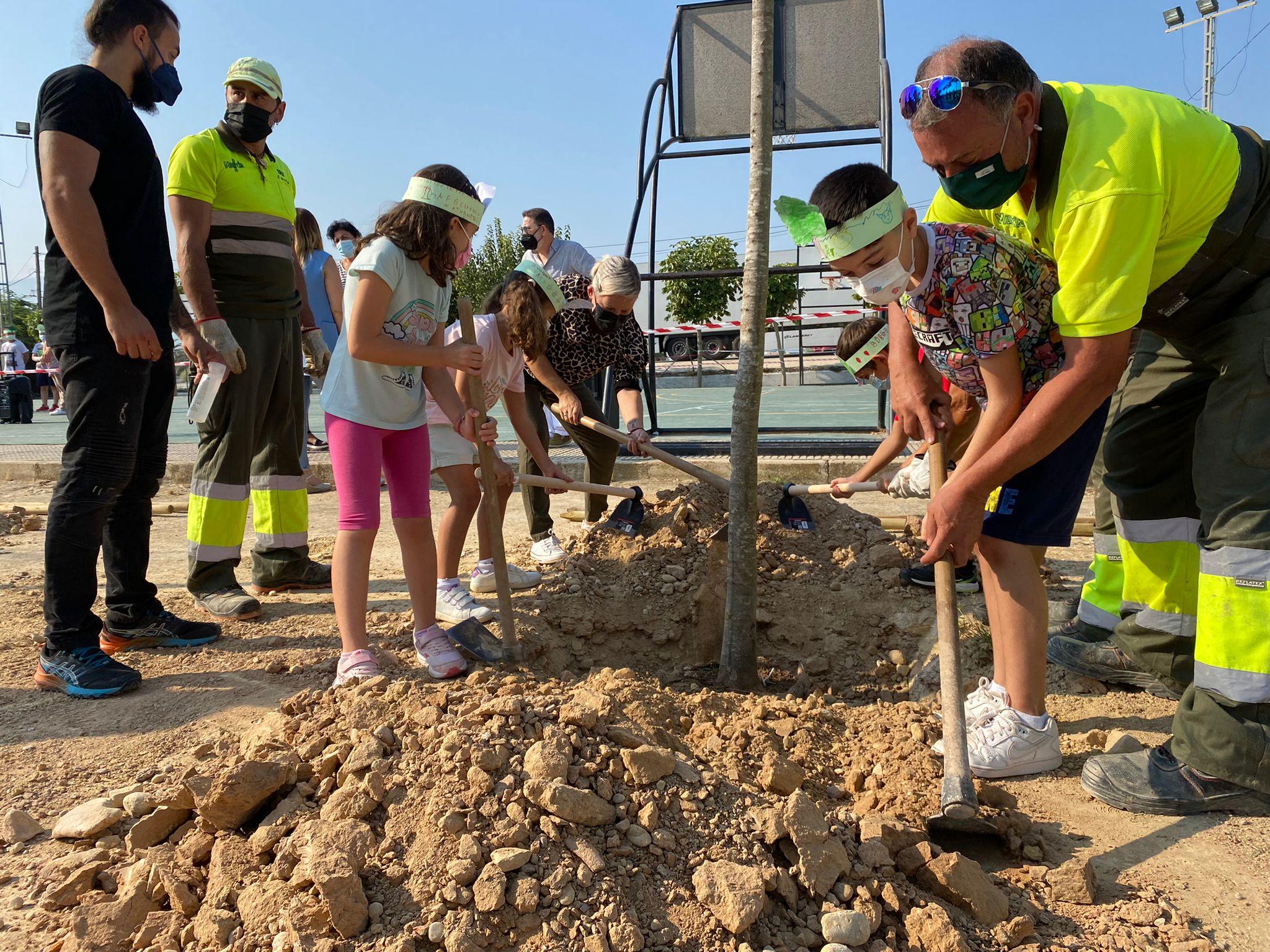 El Ayuntamiento de Murcia plantará más de 12.500 árboles en su nueva apuesta por renaturalizar el municipio y hacerlo más verde